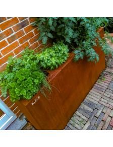 Jardinières aromatiques